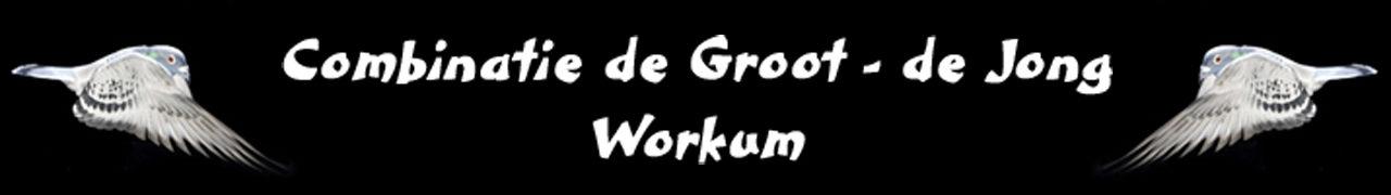 Combinatie de Groot – de Jong uit Workum